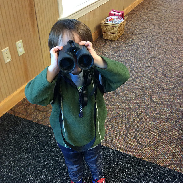 Begin Birdwatching at New Hope Audubon