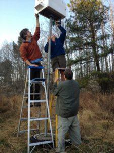 Installing a Barn Owl Nest Box