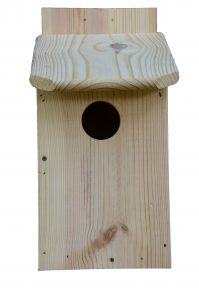 Eastern Screech-owl Nest Box