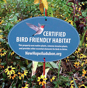 Bird Friendly Habitat