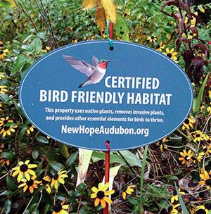 Bird Friendly Habitat
